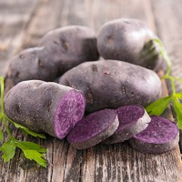 potato-purp